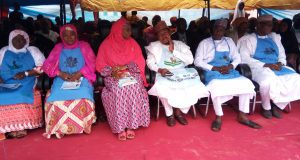 Niger 'First Lady' reiterated commitment on quality healthcare for women, children
